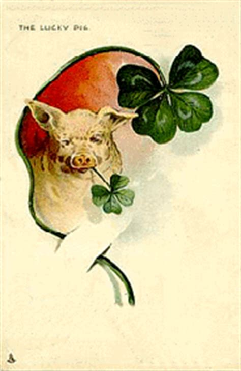 new year pig meaning lucky piggy