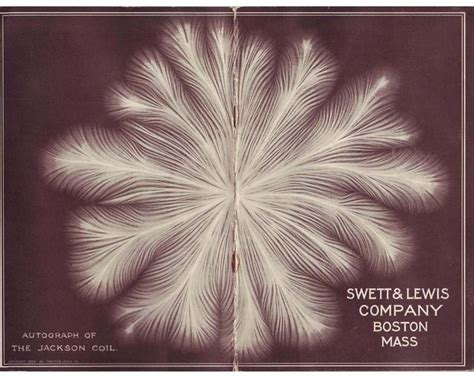 spark discharge books 25 best ideas about lichtenberg figures on