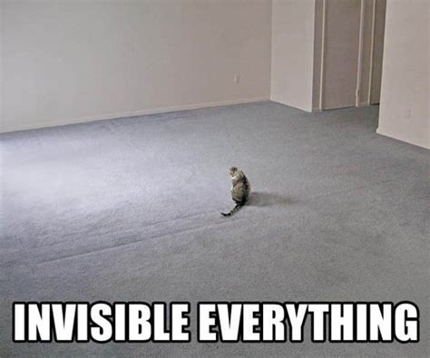 invisible everything cat meme cat planet cat planet