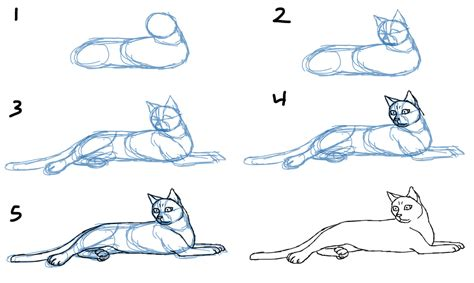 how to draw doodle cat 1 savanna williams how to draw cat bodies in poses
