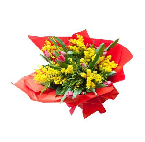 foto mimosa fiore mazzo di fiori della mimosa immagine stock immagine