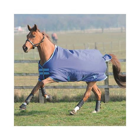 Equestrian Clearance Turnout Rugs by Saxon Lite Standard Turnout Millbry Hill