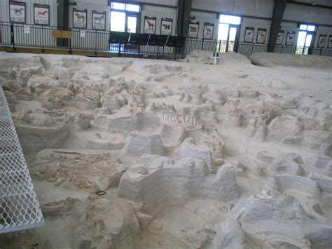 ashfall fossil beds state historical park ashfall fossil beds state historical park parks