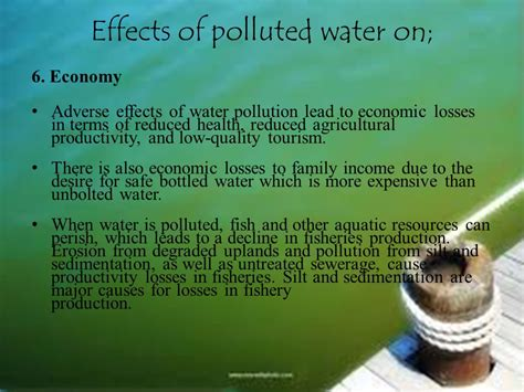 6 Effects Of More Water by Presentation On Water Pollution In Bangladesh Ppt
