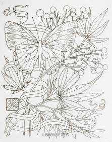 cannabis coloring book cynthia emerlye vermont artist and coach september 2012