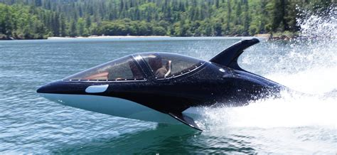 the shark names the submarine whale watching boat where on earth a place to rent hmmm a killer whale