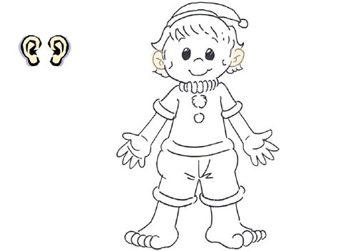 free body parts of coloring pages