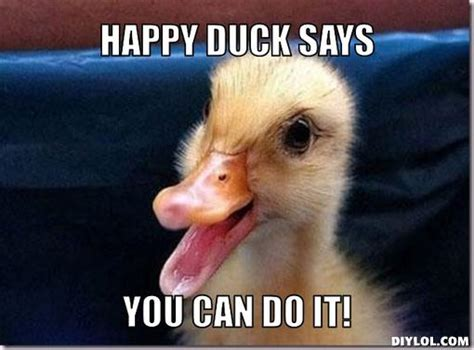 You Can Do It Meme - mereduck meme generator happy duck says you can do it