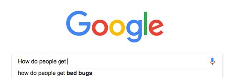 how does a person get bed bugs how people get bed bugs understand bed bugs by the bed bug pros