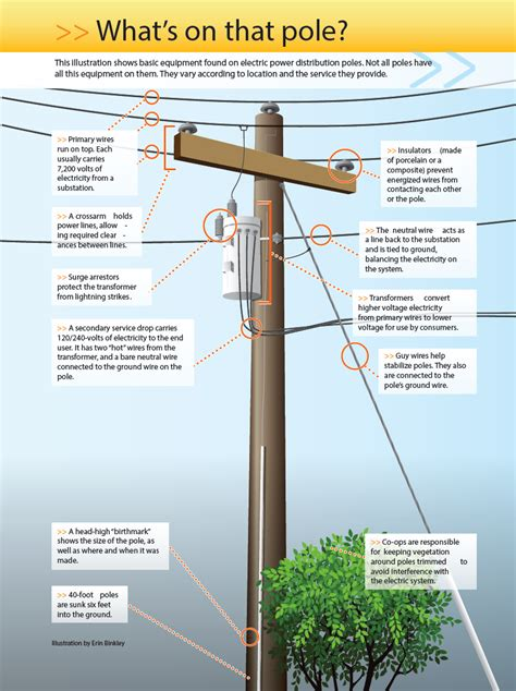 utility pole diagram why electric co ops replace utility poles clay electric