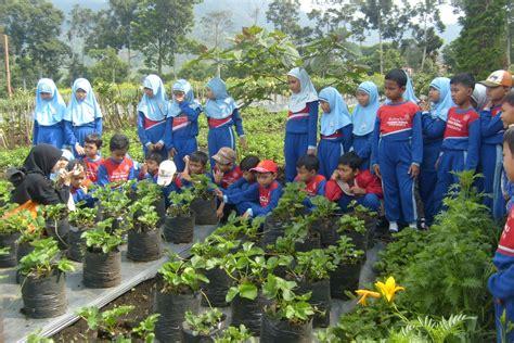 Sk Ii Di Bandung mengajarkan bercocok tanam kepada anak di farmer