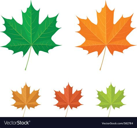 canada rubber st maple leaf vector logo the best vector 2017