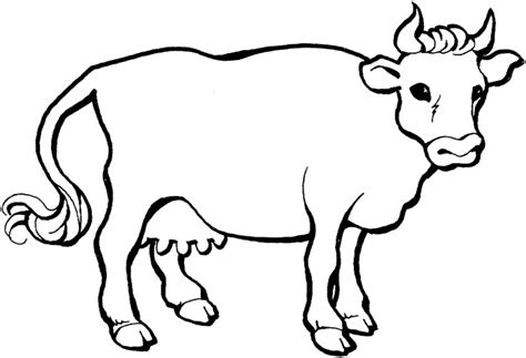coloring page for cow cow coloring page dr odd