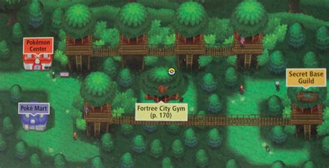 fortree city the pok 233 mon wiki