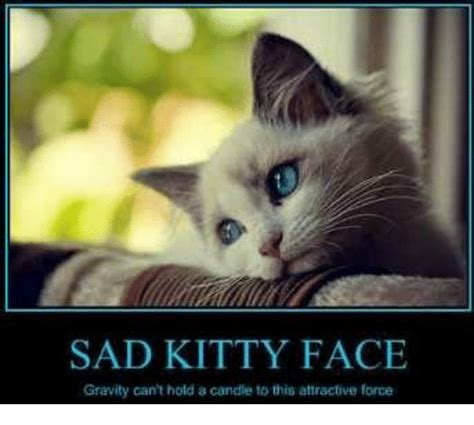 Sad Kitty Meme - 25 best memes about sad kitty sad kitty memes