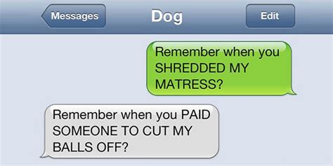 if dogs could text what if dogs could text 25 hilarious texts from dogs bored panda gentlemint