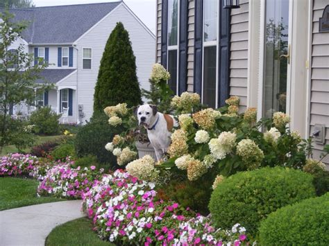 Front Yard Gardening Ideas Front Yard Landscaping Ideas House Experience
