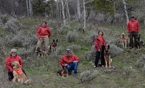 Wyoming Search Wyoming K9 Search Rescue Certified Search Team