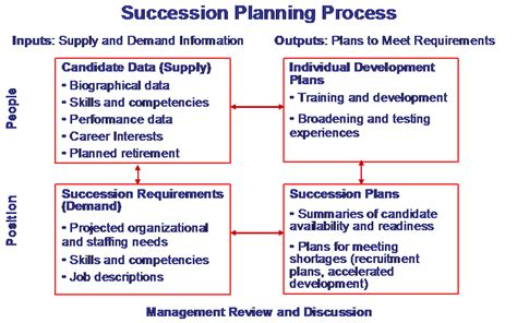 Succession Planning Mcconnell Consulting Inc Career Succession Planning Template