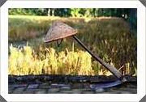 Alat Semprot Tanaman Sederhana contoh alat alat pertanian sederhana sindo glamor