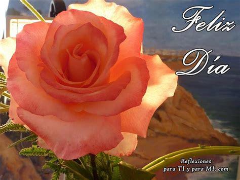 imagenes de buenos dias con los colores rasta buenos deseos para ti y para m 205 hermosa rosa color