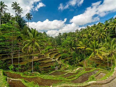 best place to visit bali top places to visit in bali indonesia holidayme