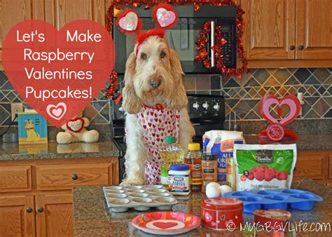 raspberries for dogs raspberry valentines pupcakes for dogs my gbgv