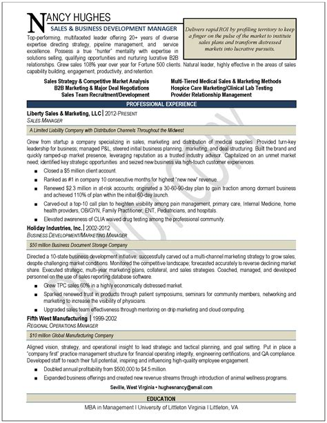 example of a professional resume 19 example of it resume