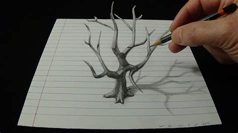 3d Drawing art 3d drawing old tree how to draw 3d tree with pencil