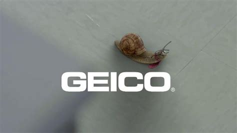 geico advertising caigns wikipedia the free encyclopedia who is the actor who plays peter in the geico commercial