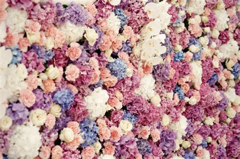 Hortensie The 2779 by White Roses And Pink Hydrangeas Make Beautiful Flower Wall