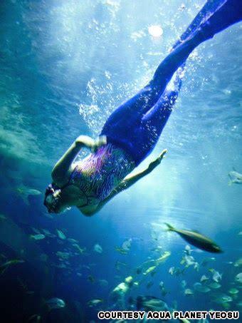 Kostum Hewan Ikan Hiu putri duyung cantik di aqua planet yeosu magazine