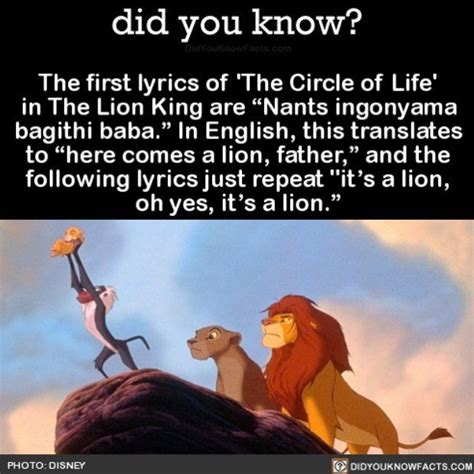 Lion King Schenectady Meme - 10 best ideas about lion king lyrics on pinterest lion