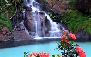 beautiful waterfalls with flowers beautiful waterfalls with flowers wallpaper