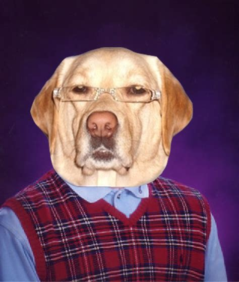 Racist Dog Meme - bad luck racist dog bad luck brian know your meme
