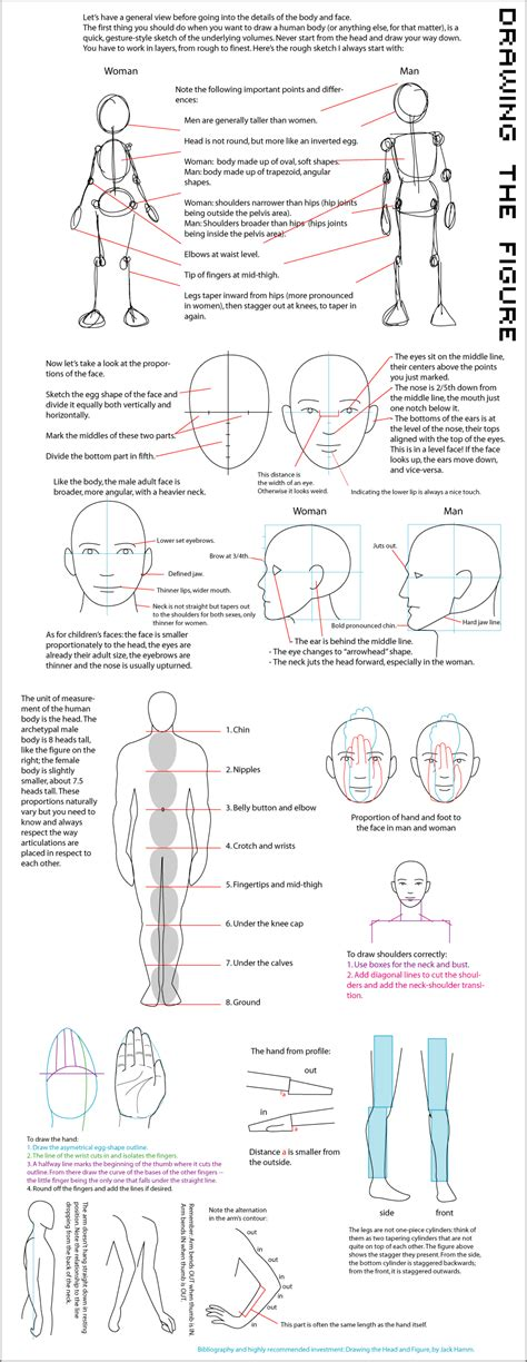Drawing Guide Express Guide Figure Drawing By Majnouna On Deviantart
