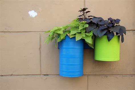 Pot Nakata Kotak Warna Warni gambar menanam dinding hijau warna biru mebel kuning bunga bunga pot bunga kotak