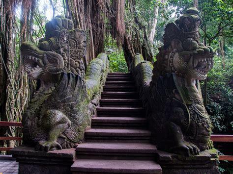 sacred monkey forest sanctuary ubud indonesia sonya