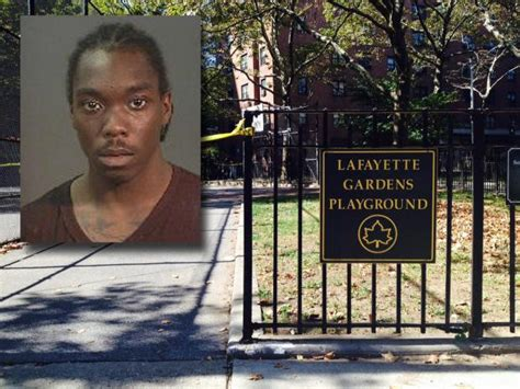 bed stuy crime man accused of shooting brooklyn mom arrested in
