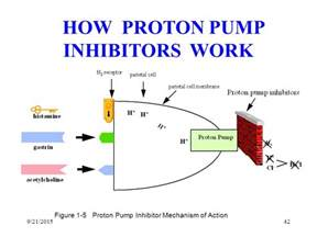 Proton Inhibitor Mechanism Peptic Ulcer Disease From Ph To Hp By Dr G Muntingh Ppt