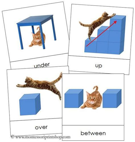 printable montessori language cards preposition cards printable montessori grammar materials