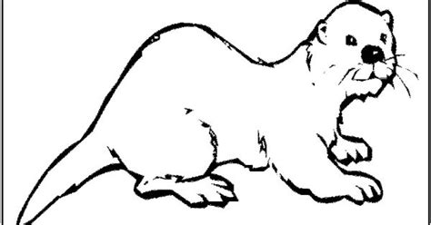 otter coloring pages preschool otter coloring page of otter preschool pinterest