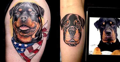 rottweiler tattoos 11 reserved rottweiler tattoos tattoodo