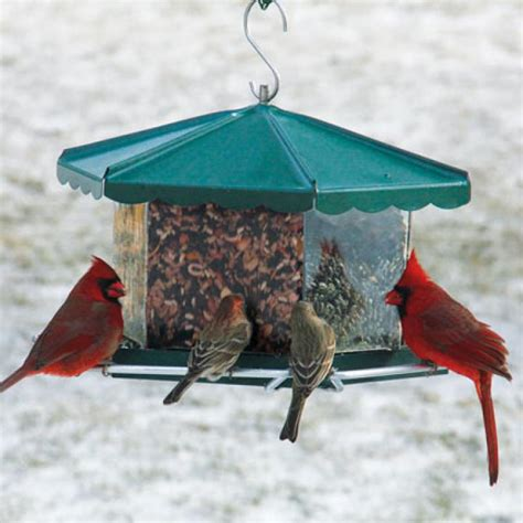 birdfeeder backyard how to make the old farmer s almanac