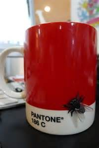 1000 ideas about pantone 186 on pinterest pantone 186c