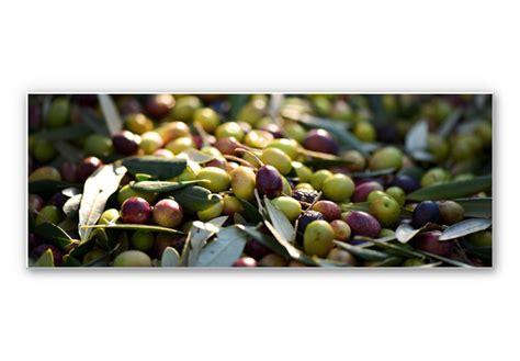 mediterrane wandbilder hartschaum wandbild mediterrane oliven panorama wall