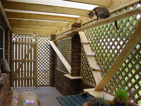 cat patio cat enclosures and cat fences with photos interesting