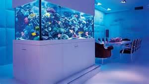 1000 ideas about custom aquariums on fish
