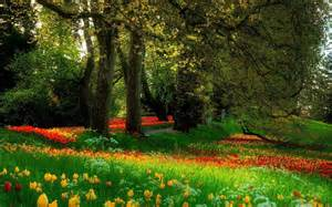 Beautiful Garden by Lush Greenery Pictures Beautiful Gardens Wonderwordz