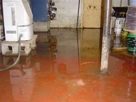 basement flooding clean up basement flooding cleanup a step by step guide san